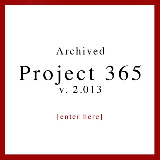 Project 365 2013